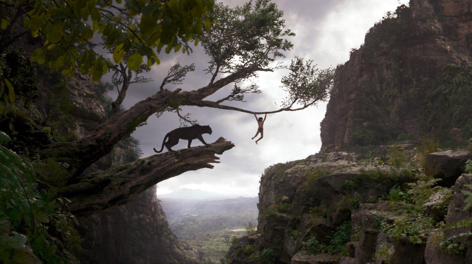 The Jungle Book – Wiedersehen macht Freude